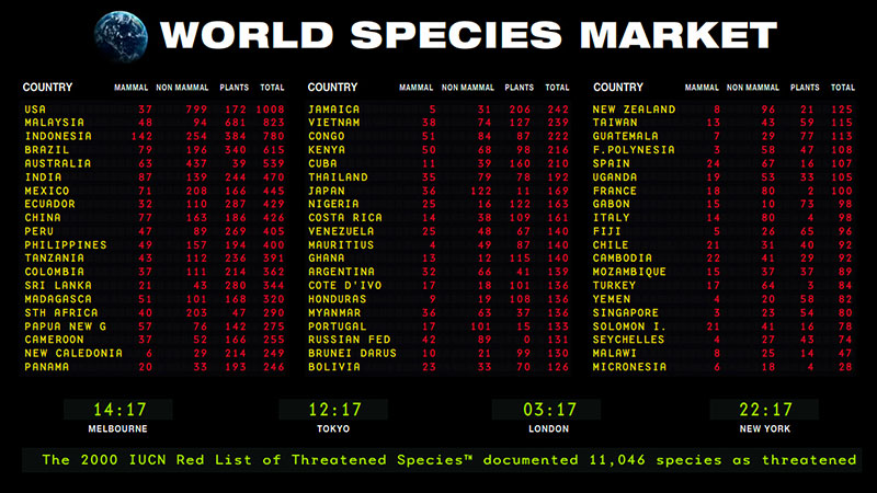 Debbie Symons, World Species Market
