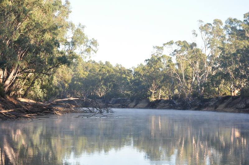 2.	Dungala (Murray River), just down from Maloga. Photo: Belinda Briggs