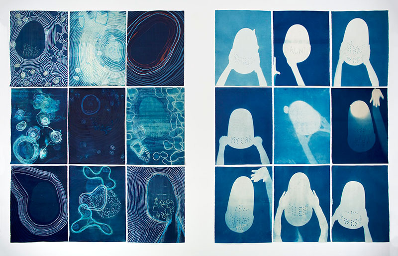 Sue Pedley, Blueprint series