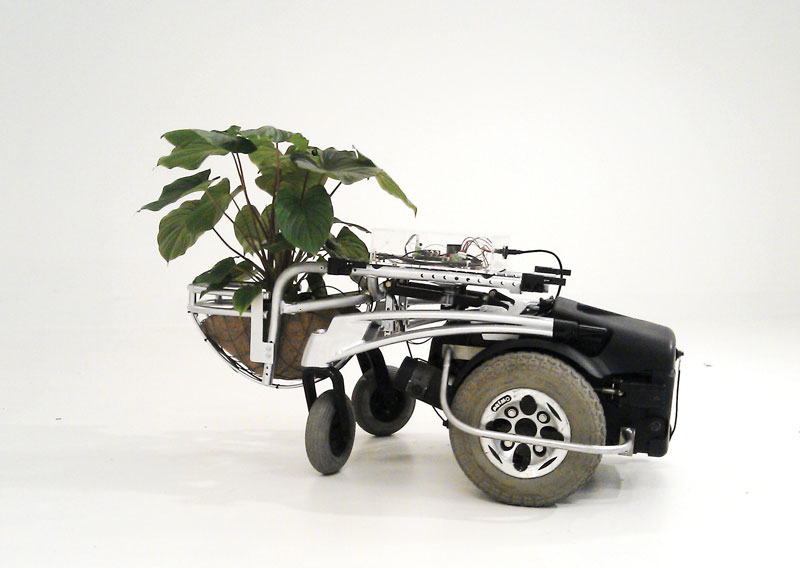Ivan Henriques Prototype for a New Bio Machine 2012, with plant species Homalomena.