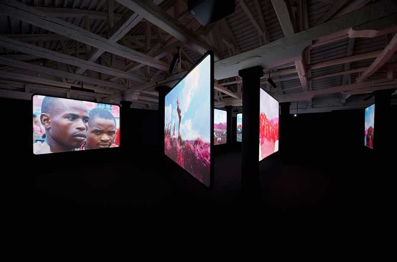 Richard Mosse, The Enclave, 2012–13, 16mm infrared film transferred to HD video. Produced in North and South Kivu, Eastern Democractic Republic of Congo. Cinematographer/editor: Trevor Tweeten. Composer/Sound designer: Ben Frost. Installation view, National Gallery of Victoria, Melbourne. Courtesy of the artist, Jack Shainman Gallery, New York, and NGV