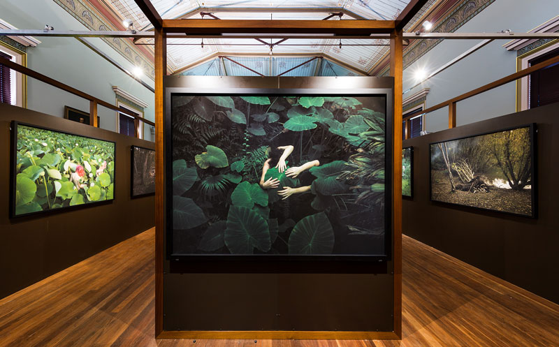Installation view, 2018 Adelaide Biennial of Australian Art: Divided Worlds featuring works by Tamara Dean, Museum of Economic Botany, Adelaide Botanic Garden, Adelaide. Photo: Saul Steed