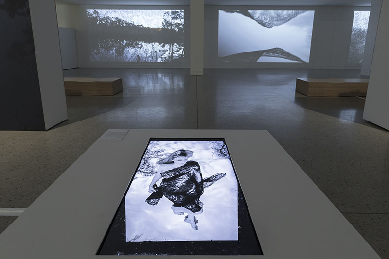 Installation view, Nicole Welch: Wildēornes Land, Blue Mountains Cultural Centre.