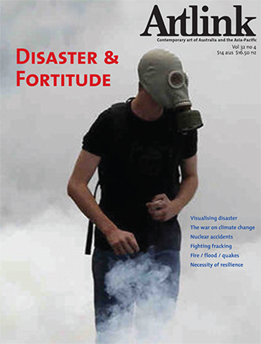 Cover of Disaster & Fortitude